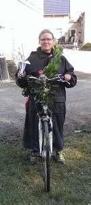 Konge Cykel